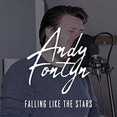 Falling Like The Stars by Andy Fontyn