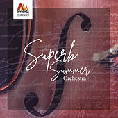 Superb Summer Orchestra by Various Artists