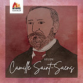 Study: Camille Saint-Saëns by Various Artists
