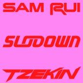Sunset Spot (Sam Rui Version) de Tzekin