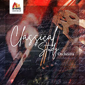 Classical Study Orchestra by Various Artists