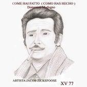 Come Hai Fatto (Como Has Hecho) by Jacob Zickefoose