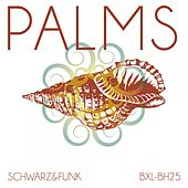 Palms by Schwarz and Funk