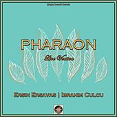 Pharaon (Oud Mix) de Ersin Ersavas