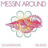 Messin' Around by Schwarz and Funk
