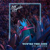 You're the One (feat. Nevve) by Big Gigantic