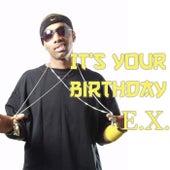 It's Your Birthday de The Ex