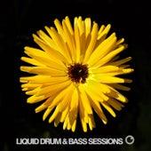 Liquid Drum and Bass Sessions 2019 Vol 1 de Various Artists