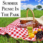 Summer Picnic In The Park von Various Artists