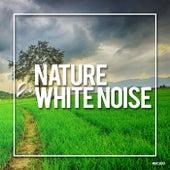 Nature & White Noise 2019 - EP de Rain Sounds (2)