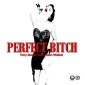 Perfect Bitch by Tony Moran