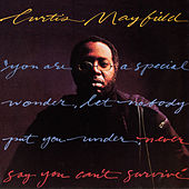 Never Say You Can't Survive von Curtis Mayfield