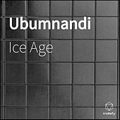 Ubumnandi by Iceage