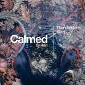 Calmed by Rain de Thunderstorm Sleep