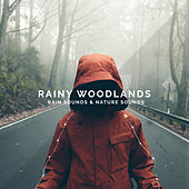 Rainy Woodlands by Rain Sounds
