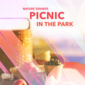Picnic in the Park by Nature Sounds (1)