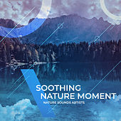 Soothing Nature Moment de Nature Sounds Artists