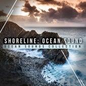 Shoreline: Ocean Sound de Ocean Sounds Collection (1)