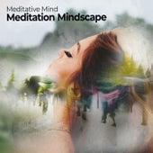 Meditation Mindscape de Meditative Mind