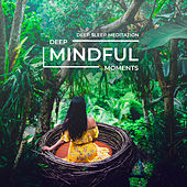 Deep Mindful Moments by Deep Sleep Meditation