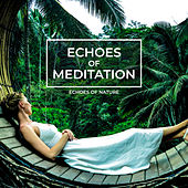 Echoes of Meditation by Echoes of Nature