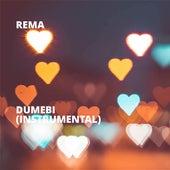 Dumebi (Instrumental) by Rema