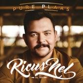 Pure Plaas von Ricus Nel