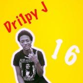 Project 16 by Dri1py J