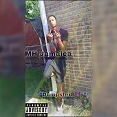 DumpsterBoy by MH Jamaica