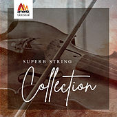 Superb String Collection de Various Artists