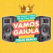 Vamos Pra Gaiola (Teles Remix) de Mc Kevin o Chris