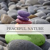 Peaceful Nature by Nature Sounds (1)