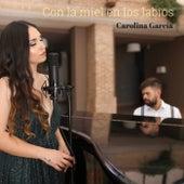 Con la miel en los labios by Carolina García