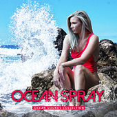 Ocean Spray by Ocean Sounds Collection (1)