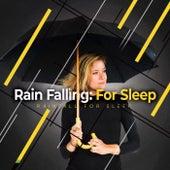 Rain Falling: For Sleep by Rainfall For Sleep