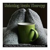 Relaxing Music Therapy: Sleep, Study, Yoga, Zen, Chill, Bedtime, Serenity, Harmony, Calm von Various Artists