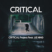 Critical by Critical Project