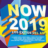 Now 2019 de Various Artists