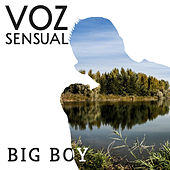 Voz Sensual by Big Boy