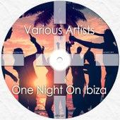 One Night On Ibiza de Various