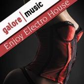 Enjoy Electro House von Various Artists