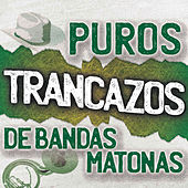 Puros Trancazos De Bandas Matonas by Various Artists