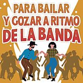 Para Bailar y Gozar A Ritmo De La Banda by Various Artists