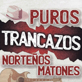 Puros Trancazos Norteños Matones de Various Artists