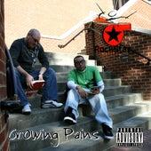 Growing Pains by Rockstar Mafia
