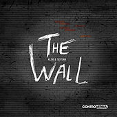 The Wall by Alok