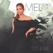 New Soul de Mel