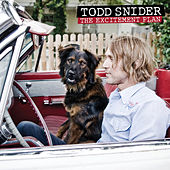 The Excitement Plan de Todd Snider