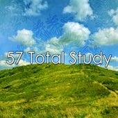 57 Total Study de Meditación Música Ambiente