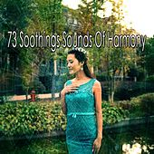 73 Soothings Sounds of Harmony de Meditación Música Ambiente